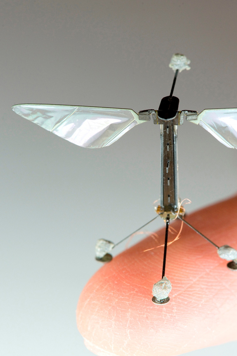 RoboBee: Coming Soon To A Swarm Near You